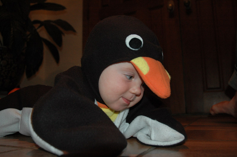 March of the Penguin 2 040.jpg