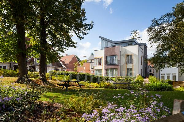 Boxgrove Gardens, Guildford