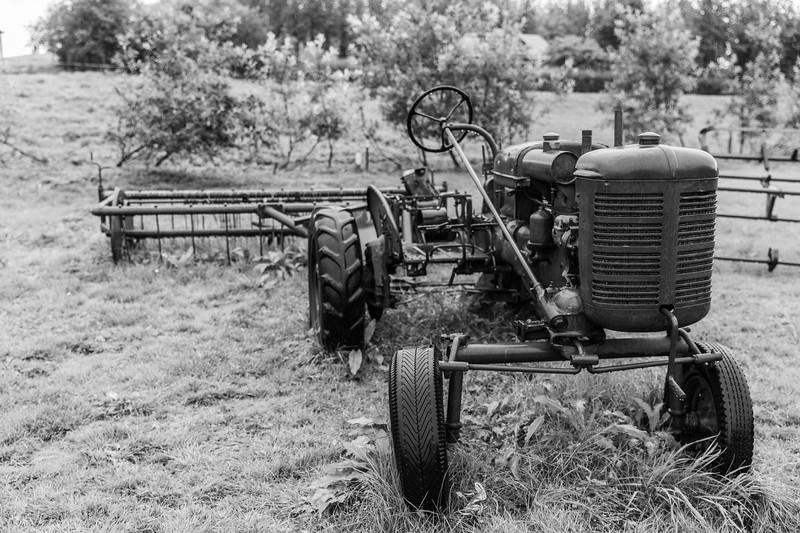 frioheimar farm