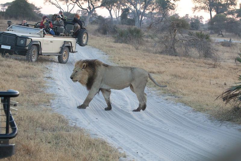 Botswana-20110719-11242.jpg