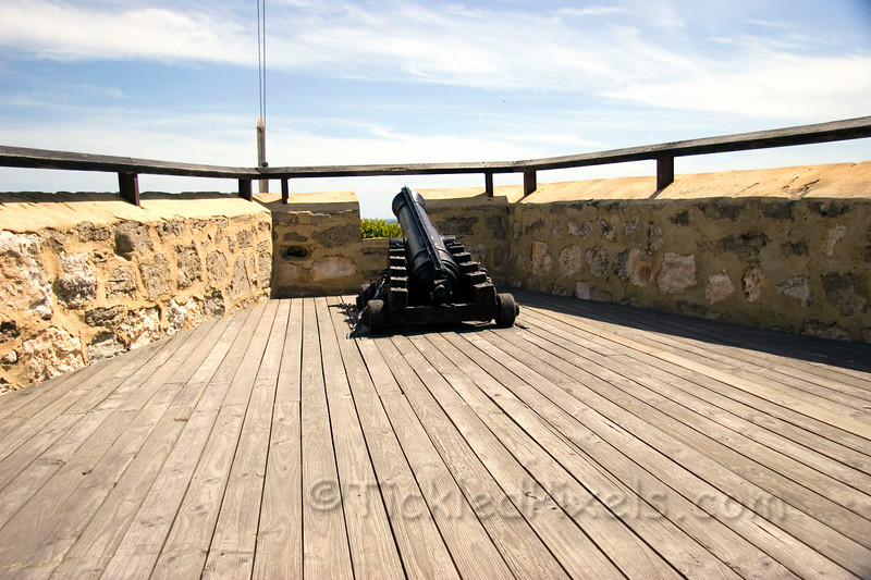 The Round House Cannon