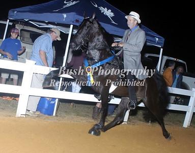 CLASS 40  WALKING HORSE CHAMPIONSHIP