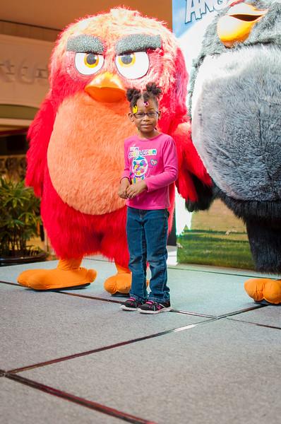 Angry Birds StoneCrest Mall 102.jpg