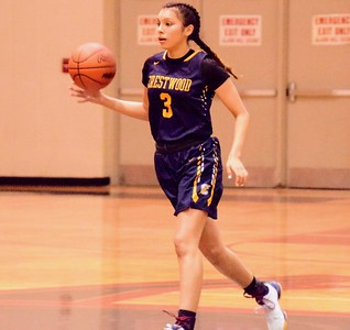 HS Sports - Crestwood vs. Divine Child Girls' Basketball 19