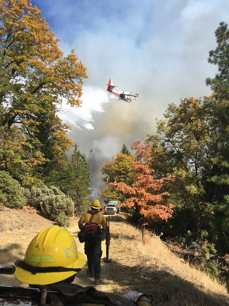Buck fire-Shasta-Trinity National Forest-photo by Michael Piper.jpg