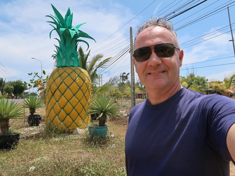 IMG_3294-james-at-pineapple.JPG
