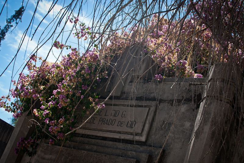 Santiago 201201 Cementerio (91).jpg