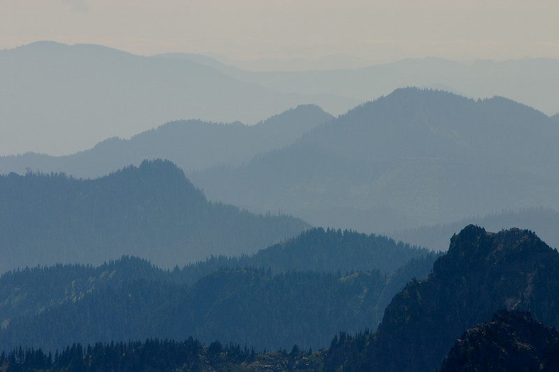 Mt. Rainier 72.JPG