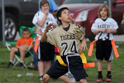 2012 Wentzville Tigers Flag, 4-15