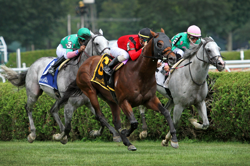 Leinster (Majestic Warrior) and jockey Tyler Gaffalione win the Troy (Gr III) at Saratoga Racecourse 8/3/19. Trainer: Rusty Arnold. Owner: Amy E. Dunne