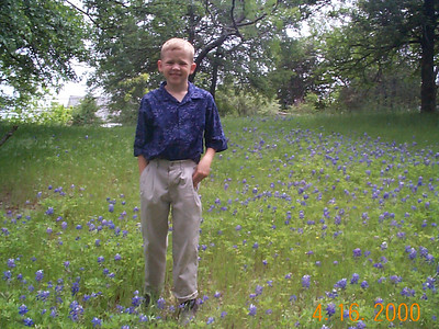 Easter Eggs and Bluebonnets, 2000