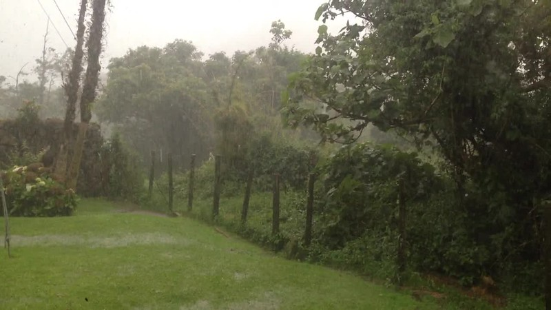 NEGATIVES_Rainy.mov