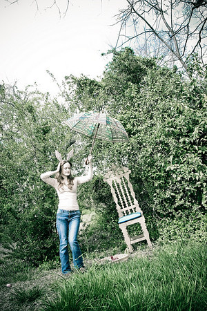 The Wonderland Series : 2010