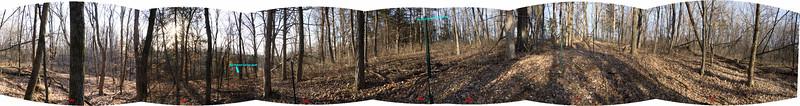 2014-15 Winter OP 16 Northwest part of northwest forest