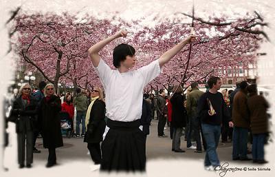 19 april 2008: Körsbärsblommans dag pt.1