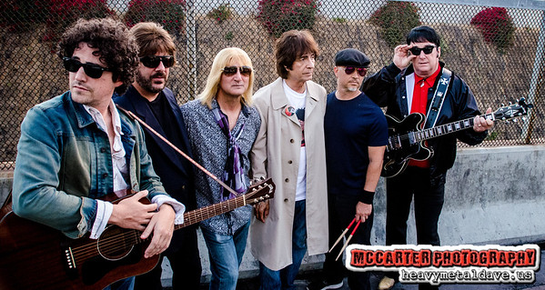 The Wilburys Experience