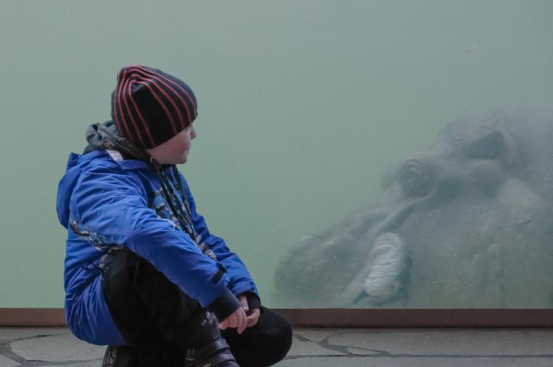 Im Zoo: Richard bestaunt die grazilen Bewegungen eines Flusspferdes.