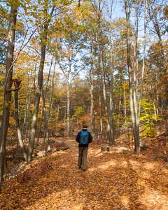 NJ.Passaic.Ramapo Mountain State Forest.Castle Trail