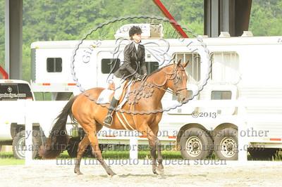 Merrill Show Horses