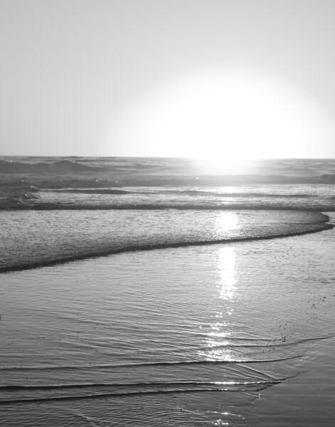 Pacific coast - Carpinteria