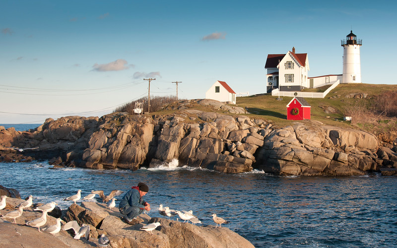 kook_at_nubble_(1_of_1).jpg
