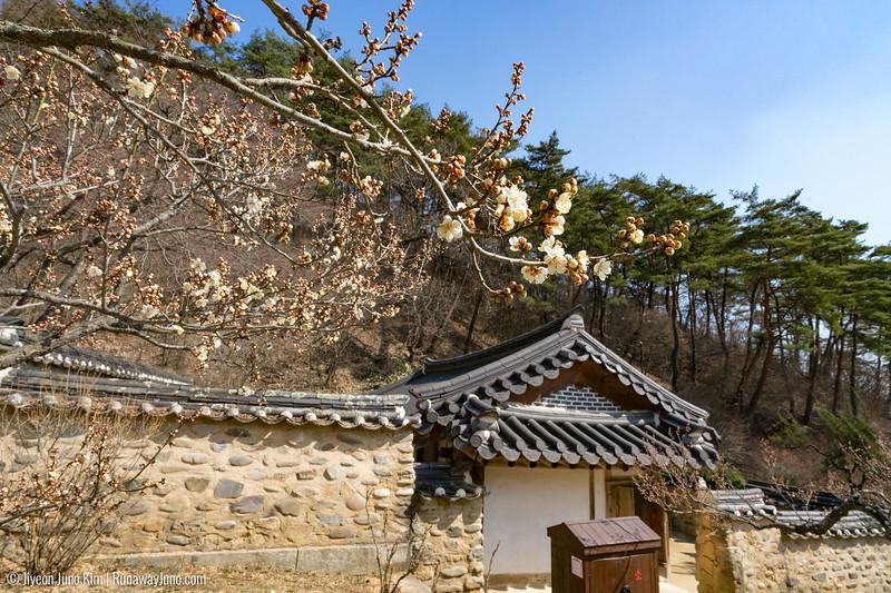Dosan Seowon-0696.jpg