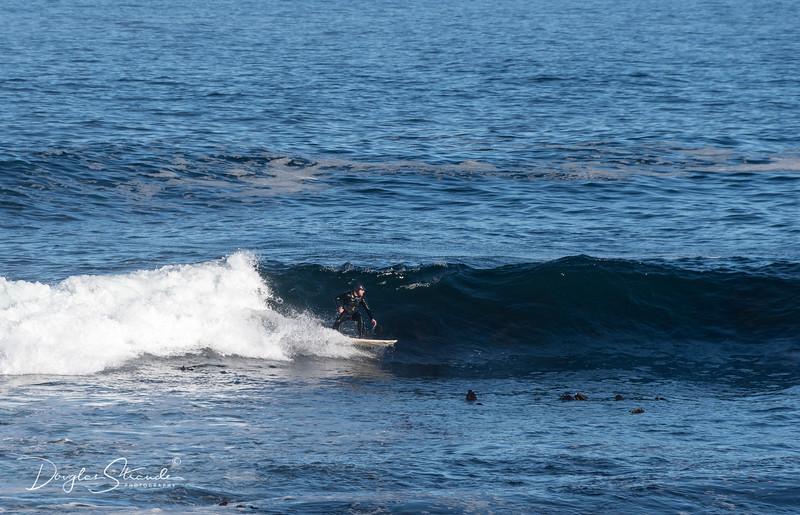 Surfer in Bantry Bay