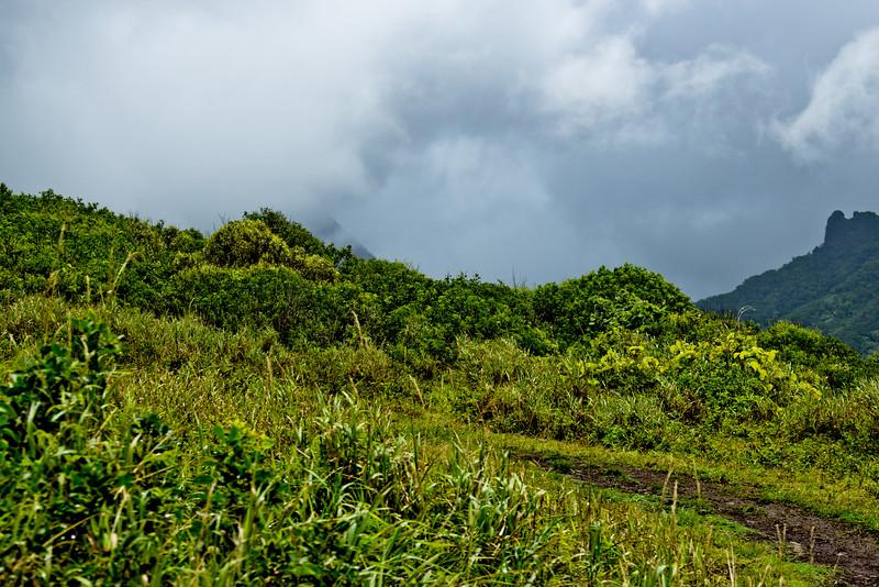 Journey into Oahu Photograph 71