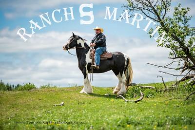 Course ACEQ Bronze- Ranch S Martin