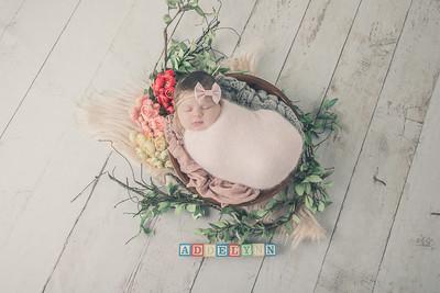 Rockford Newborn Photographer | Addelynn