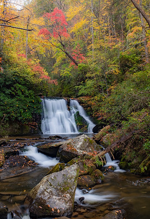 Autumn in the Carolina's (A fall picture retrospective) 2019