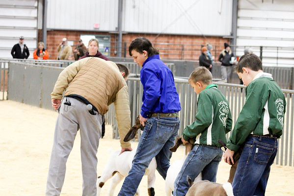 SW District Goat Shows