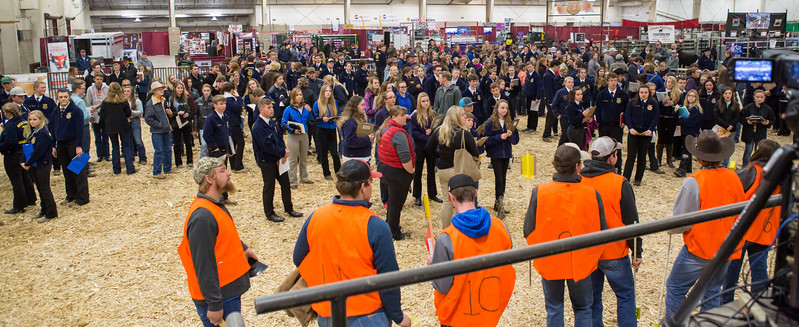 2017 NILE FFA and 4H Contest