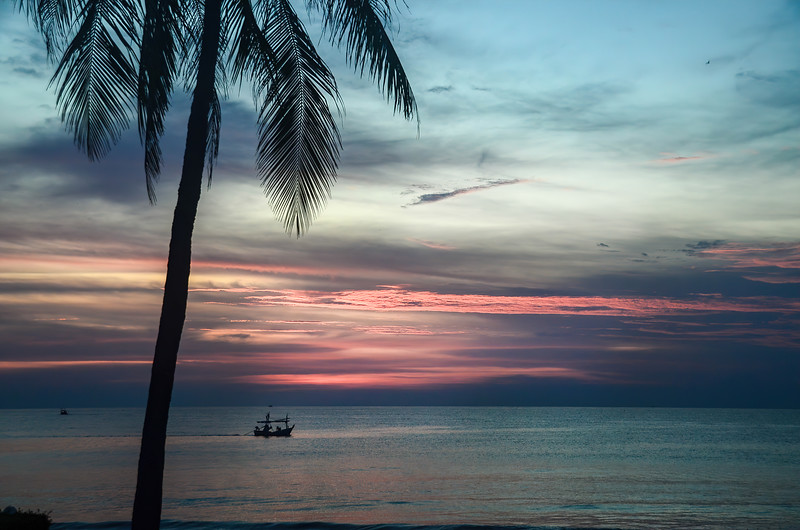 Colourful pink and gray stratocumulus cloudy exotic tropical sunrise seascape with a single Palm Tree in silhouette.