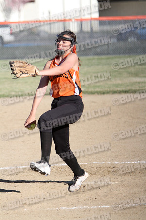 DHS Tigers JV Softball 2014
