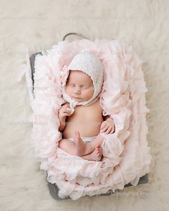 Penelope B. { Newborn }