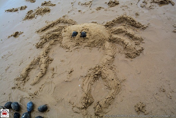 Crab Shell Painting and Sand Sculptures