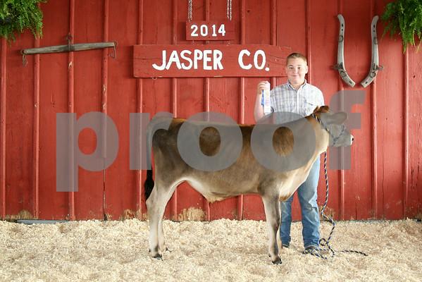 Cattle Show - Thursday