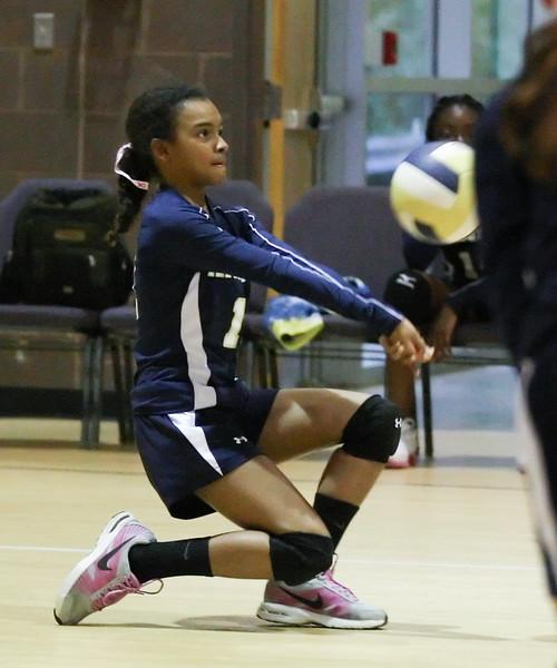 VCA-Volleyball-5.jpg