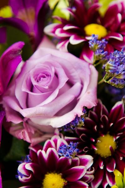 03-24-2012_0098.jpg