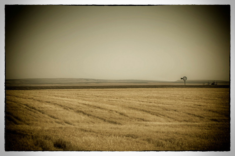 Windmill (2).jpg