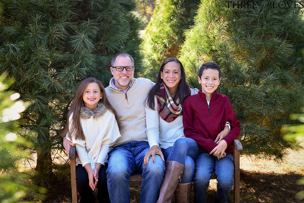 Seasonal Mini Sessions