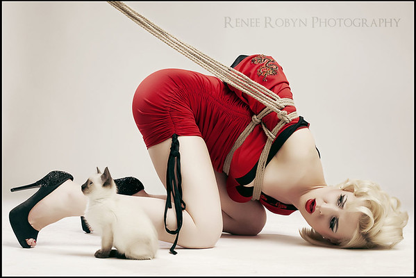 Behind the Scenes: Kittens and Rope