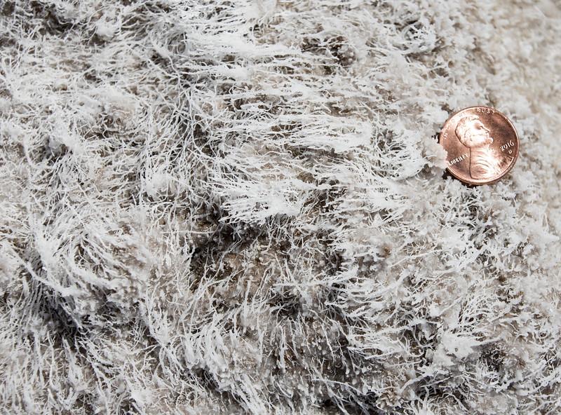 Death-Valley-badwater-salt-closeupofsurface.jpg