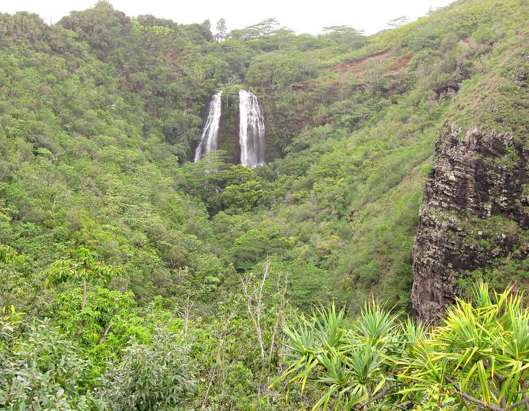 Kauai'10_S90_278.jpg