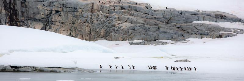 2019_01_Antarktis_04278.jpg