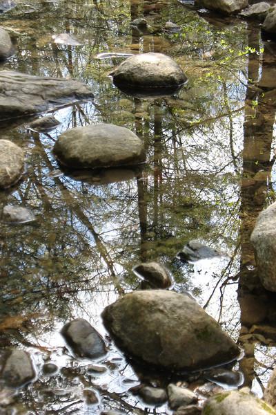 Pine Meadow Lake Hike - May 5, 2007