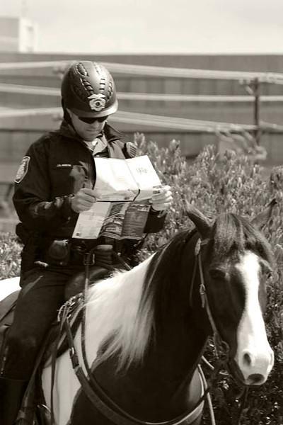 Officer and horse 1.jpg