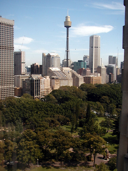 Sydney Tower From My Room at the Sydney Marriott Hyde Park