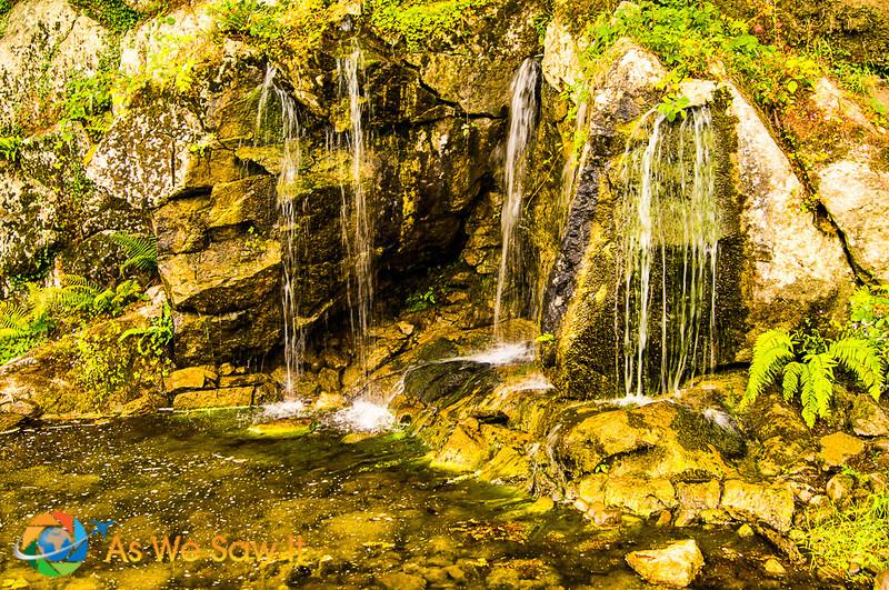 BlarneyCastle-3018.jpg